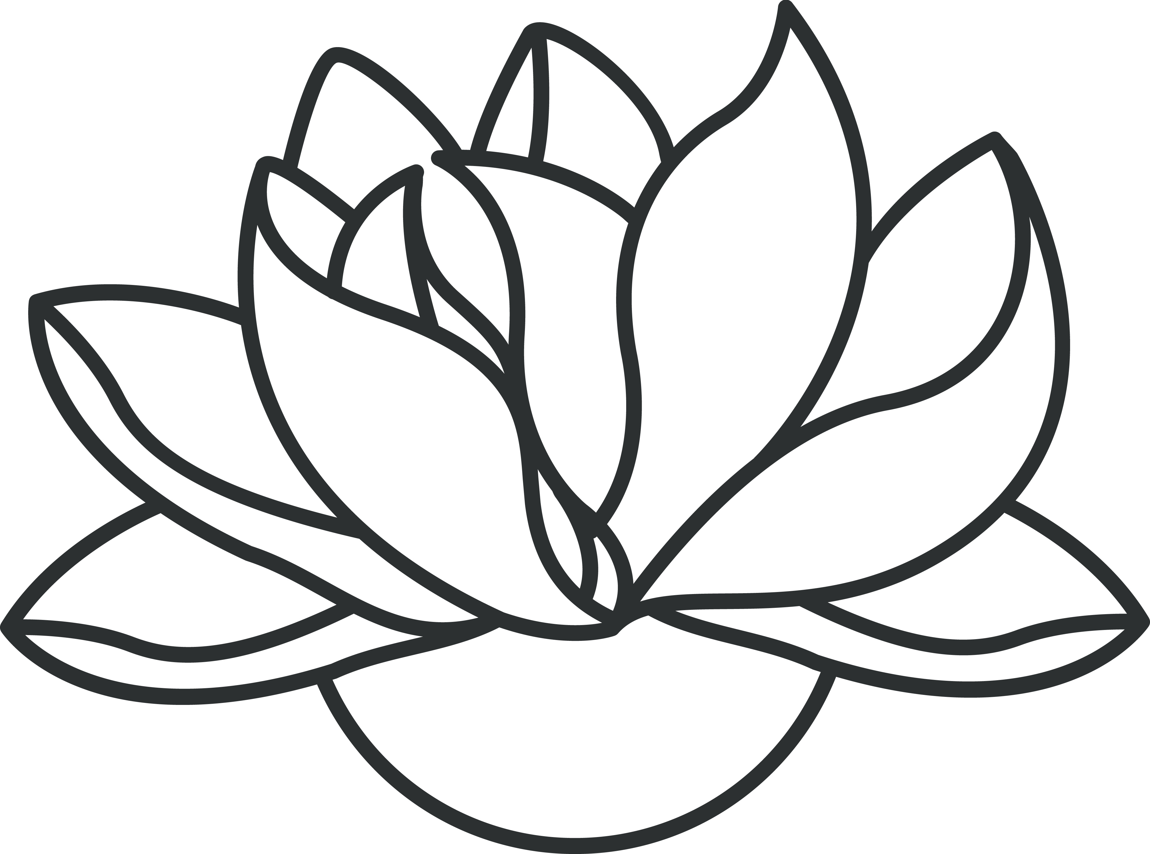 Lotus Easy Draw Transparent Png Clipart Free Download Ya Webdesign