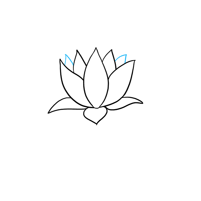 Lotus clipart easy draw. How to a flower