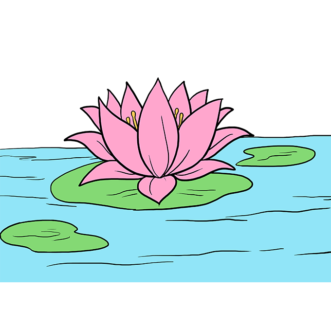 Lilypad drawing beautiful. How to draw a