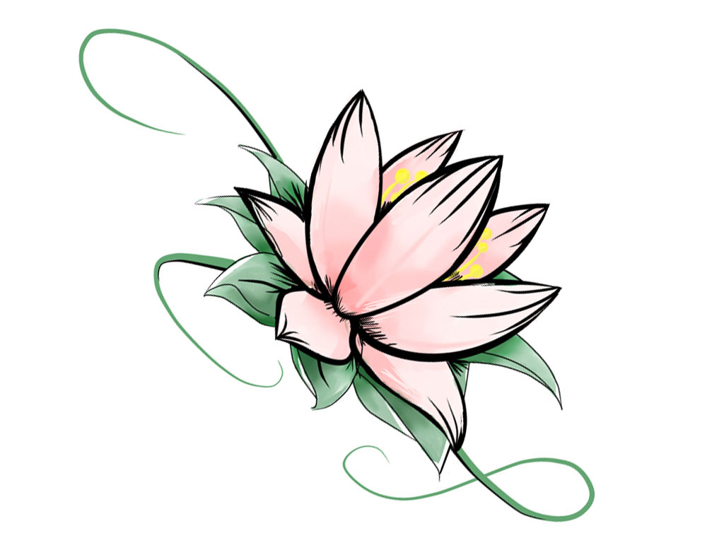 Lotus clipart easy draw. A flower drawing of