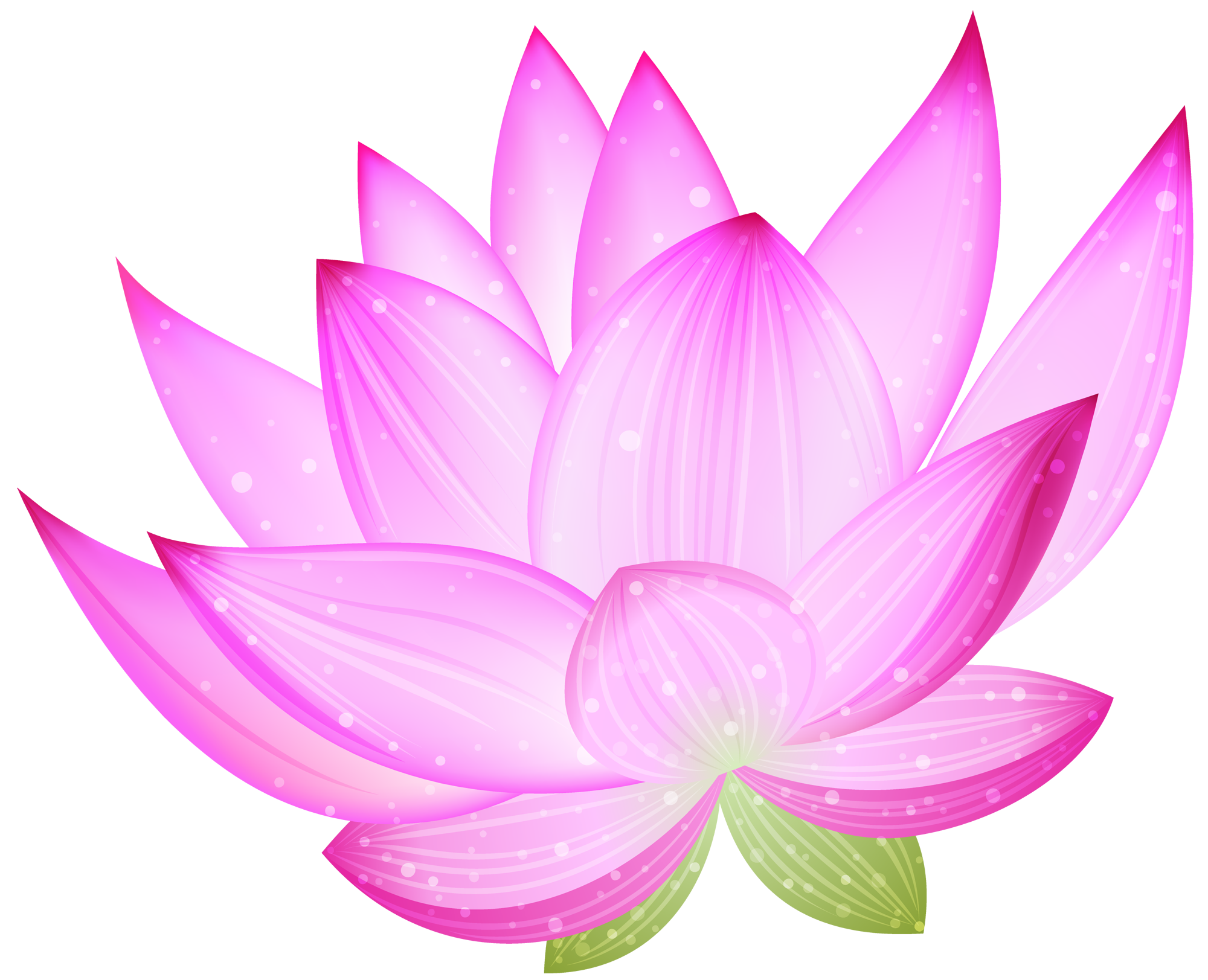 Lotus clipart large flower. Pink png gallery yopriceville
