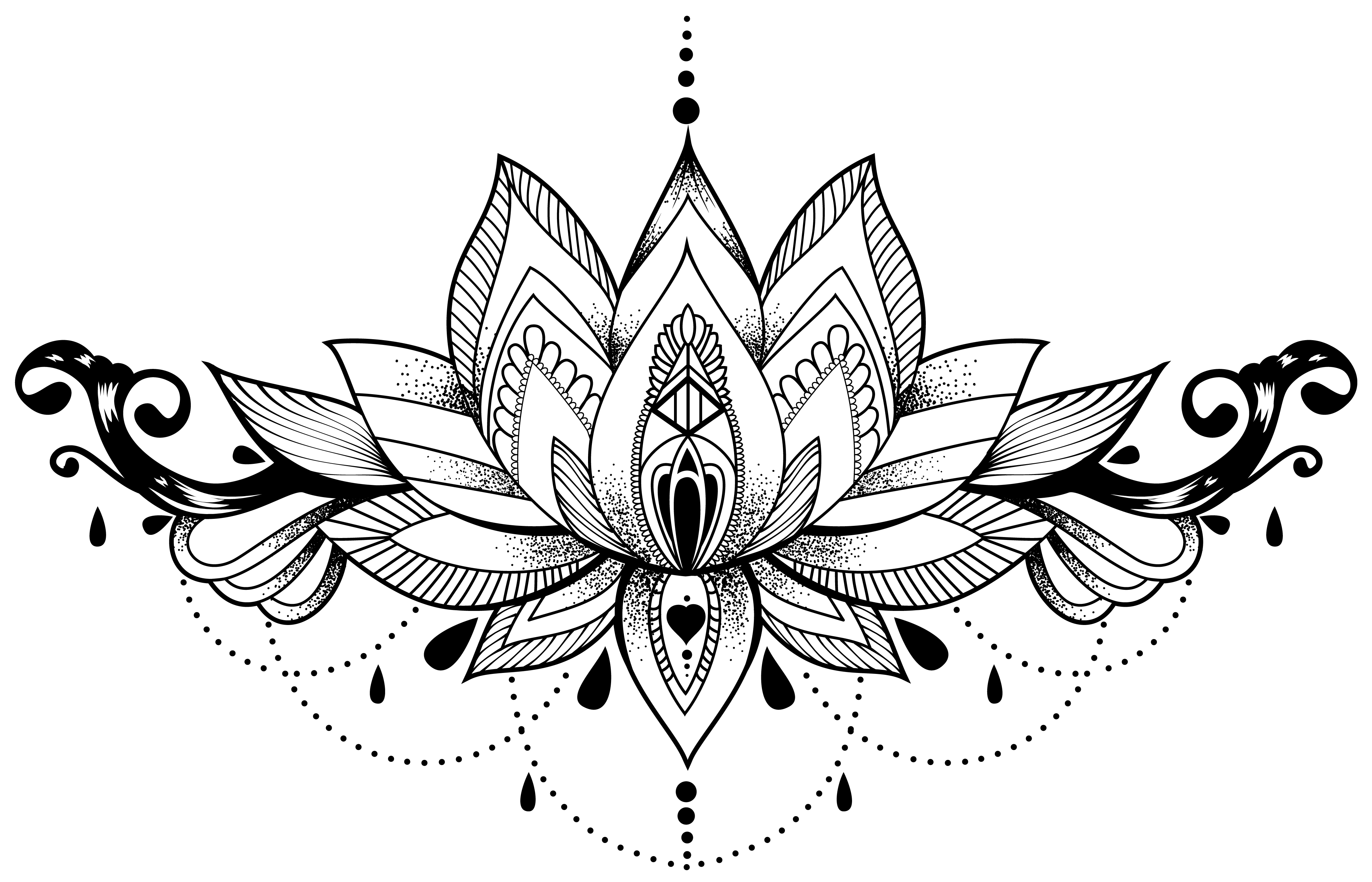 Lotus tattoo png. Chandelier pinterest chandeliers and