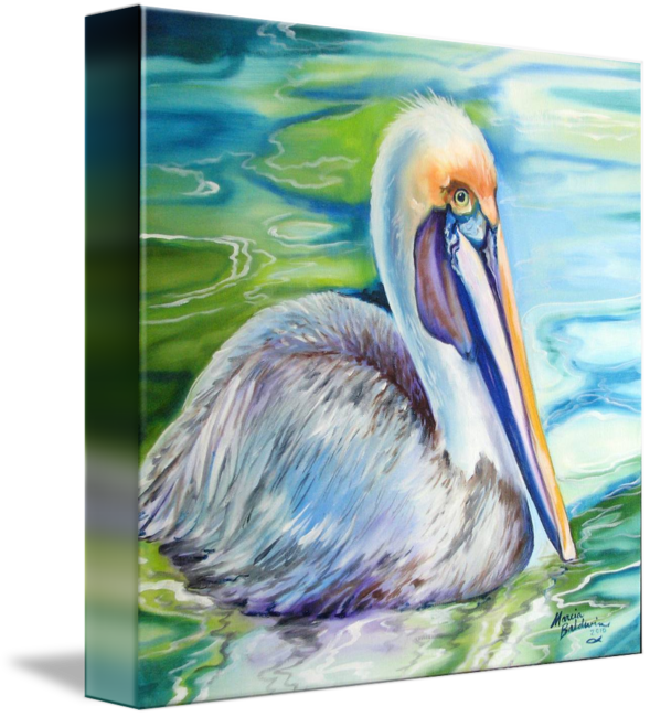 Louisiana drawing brown pelican. Of by marcia baldwin