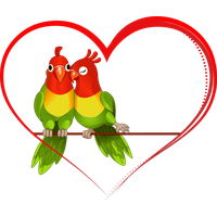 Love birds png. Download free photo images