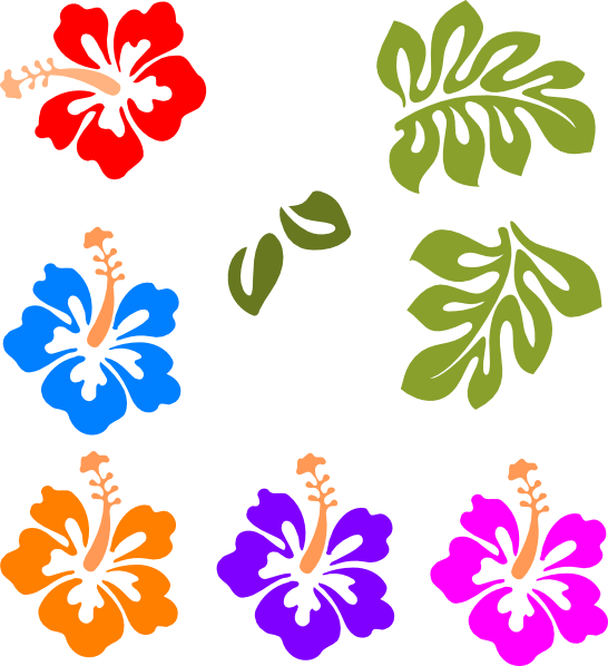 botanical vector tropical