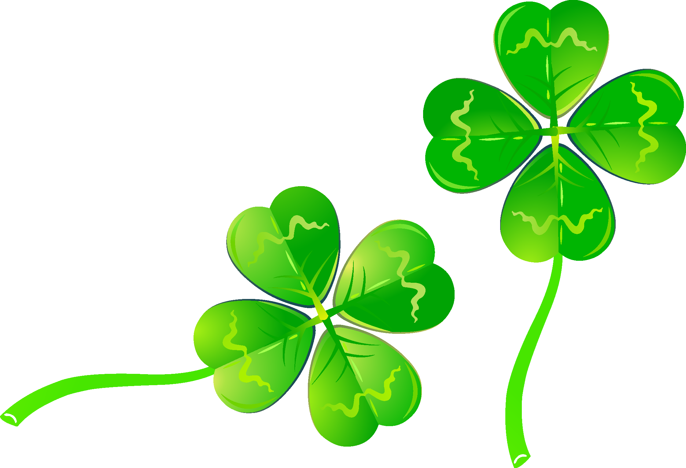 Lucky clover png. Four leaf luck transprent