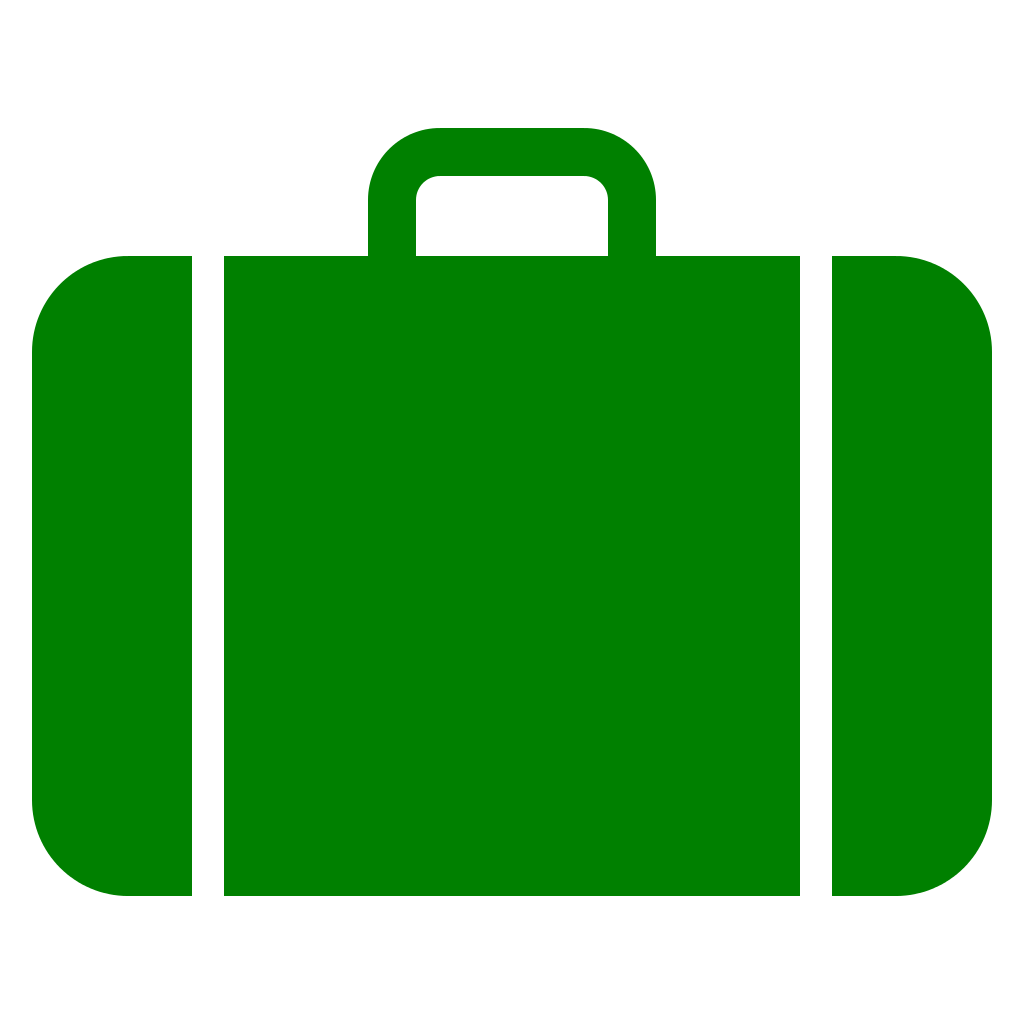 luggage vector old