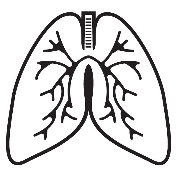 Lungs clipart black and white. Letters with regard to