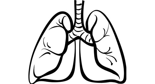 Lungs clipart black and white. Chic lung cilpart astonishing