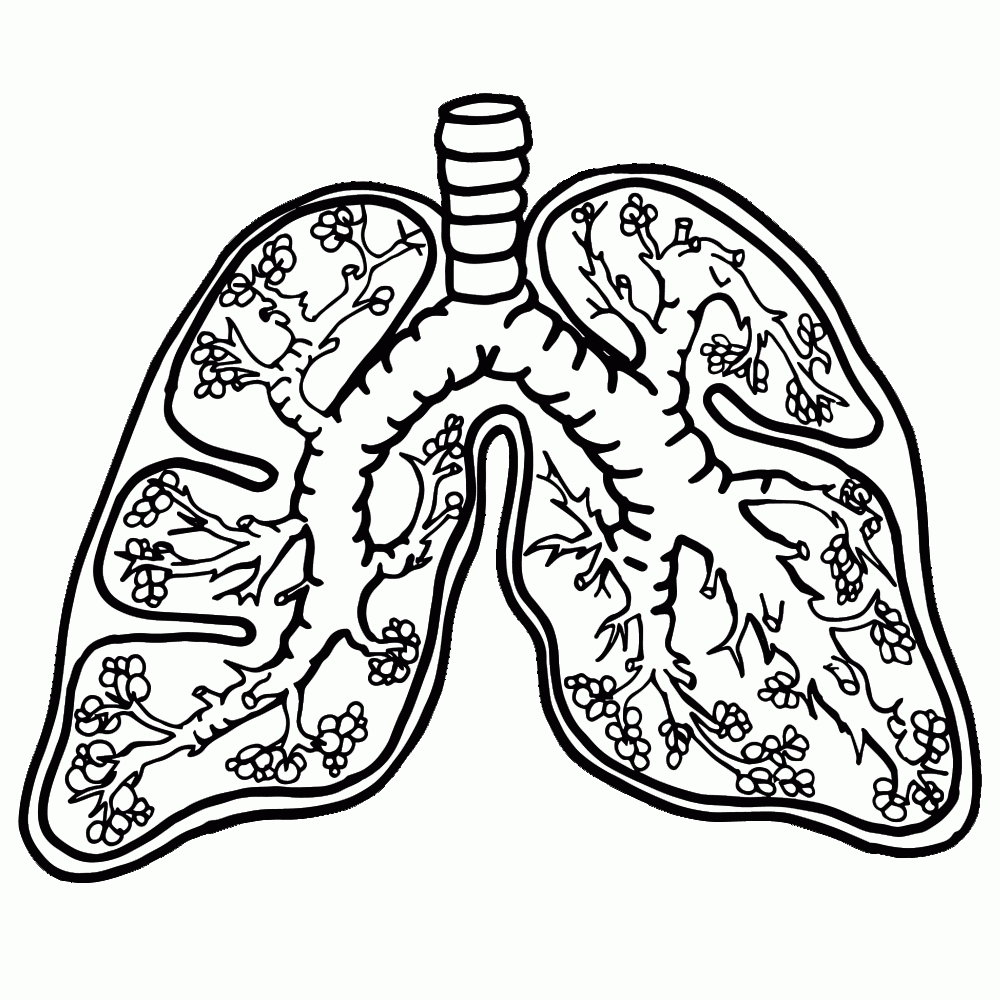 Lungs clipart black and white. Lung letters free download