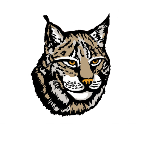 Lynx vector art. Png image clipart psd