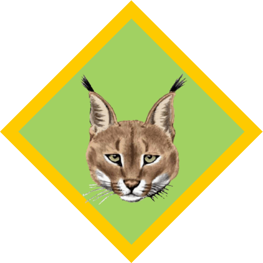 Lynx vector caracal. Encode clipart to base