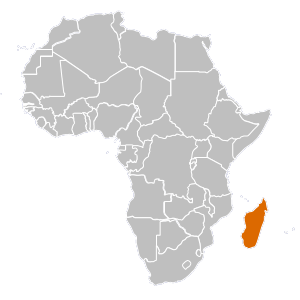 Madagascar country png. Overview map