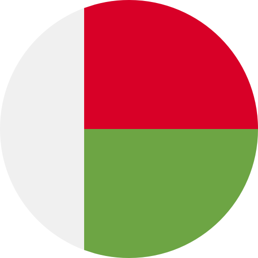 Madagascar country png. Flag icon svg