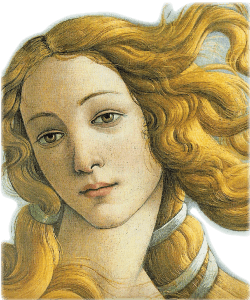 Portraits drawing renaissance. All rounded tuscany west