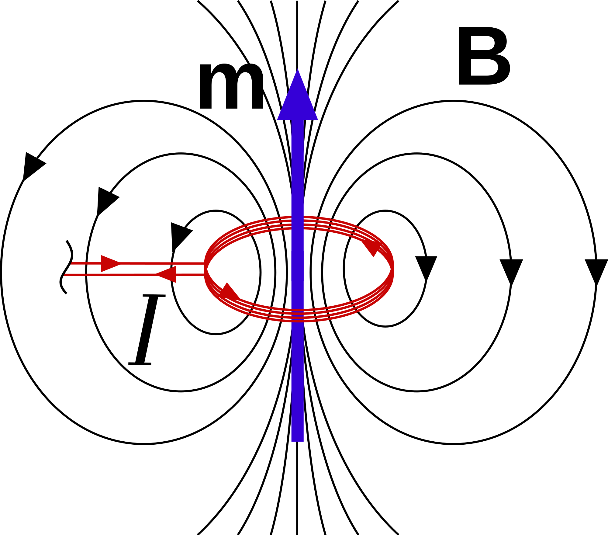 Magnetic vector pole