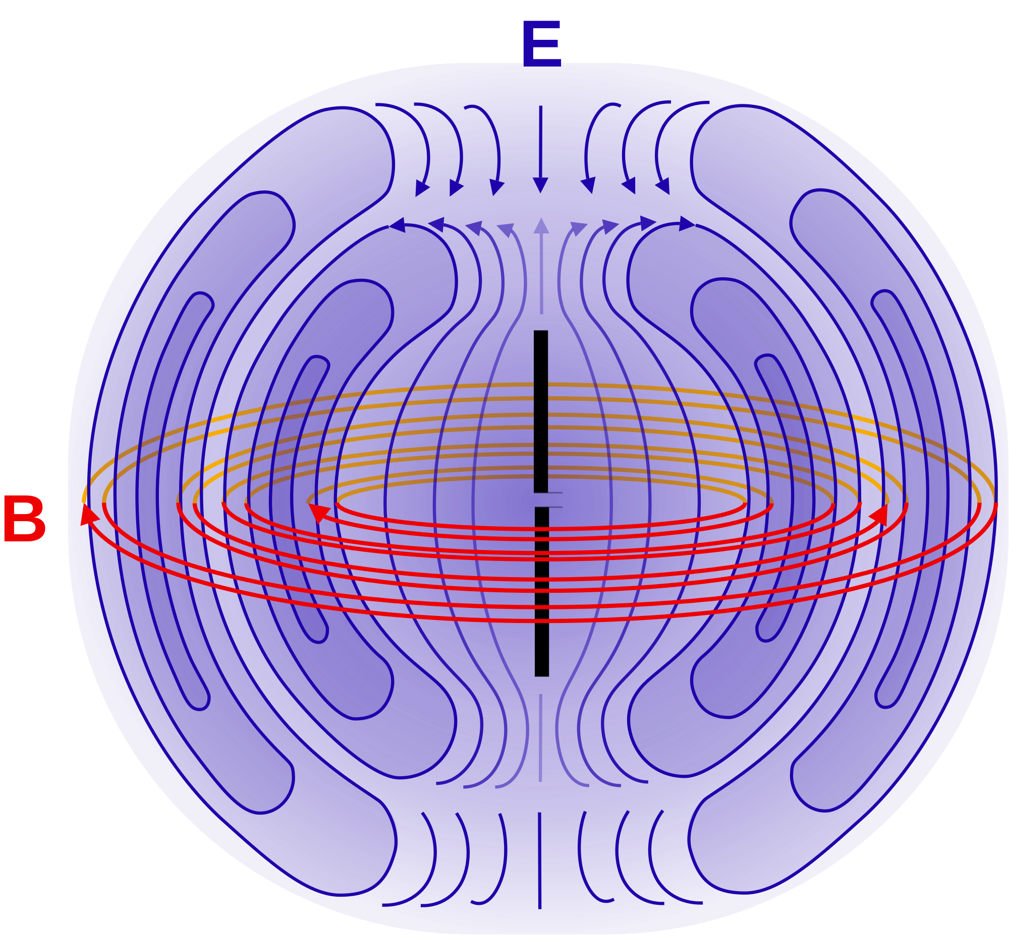 Magnetic vector body. Near and far field