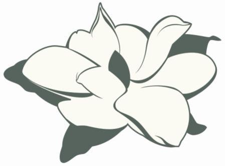 Magnolia clipart. Services provided by