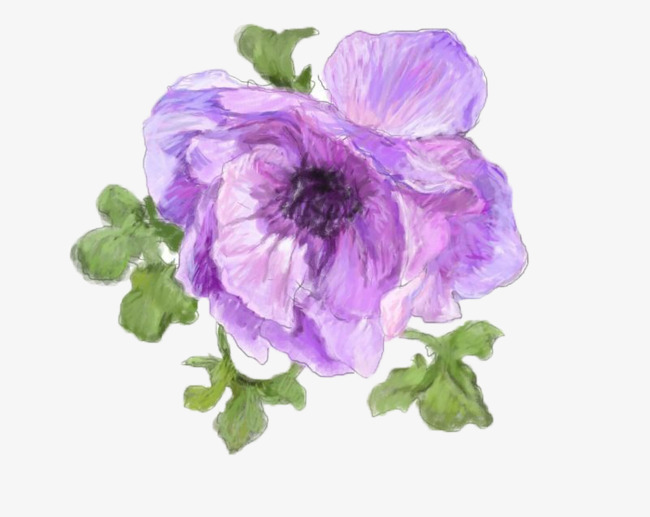 Magnolia clipart lavender flower. Hand painted realistic flowers