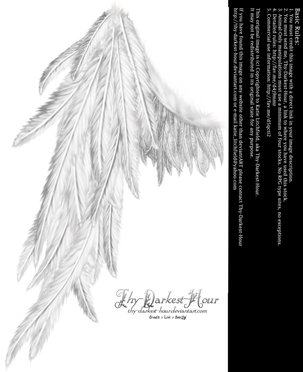 Stock drawing detailed. Draped wing white by
