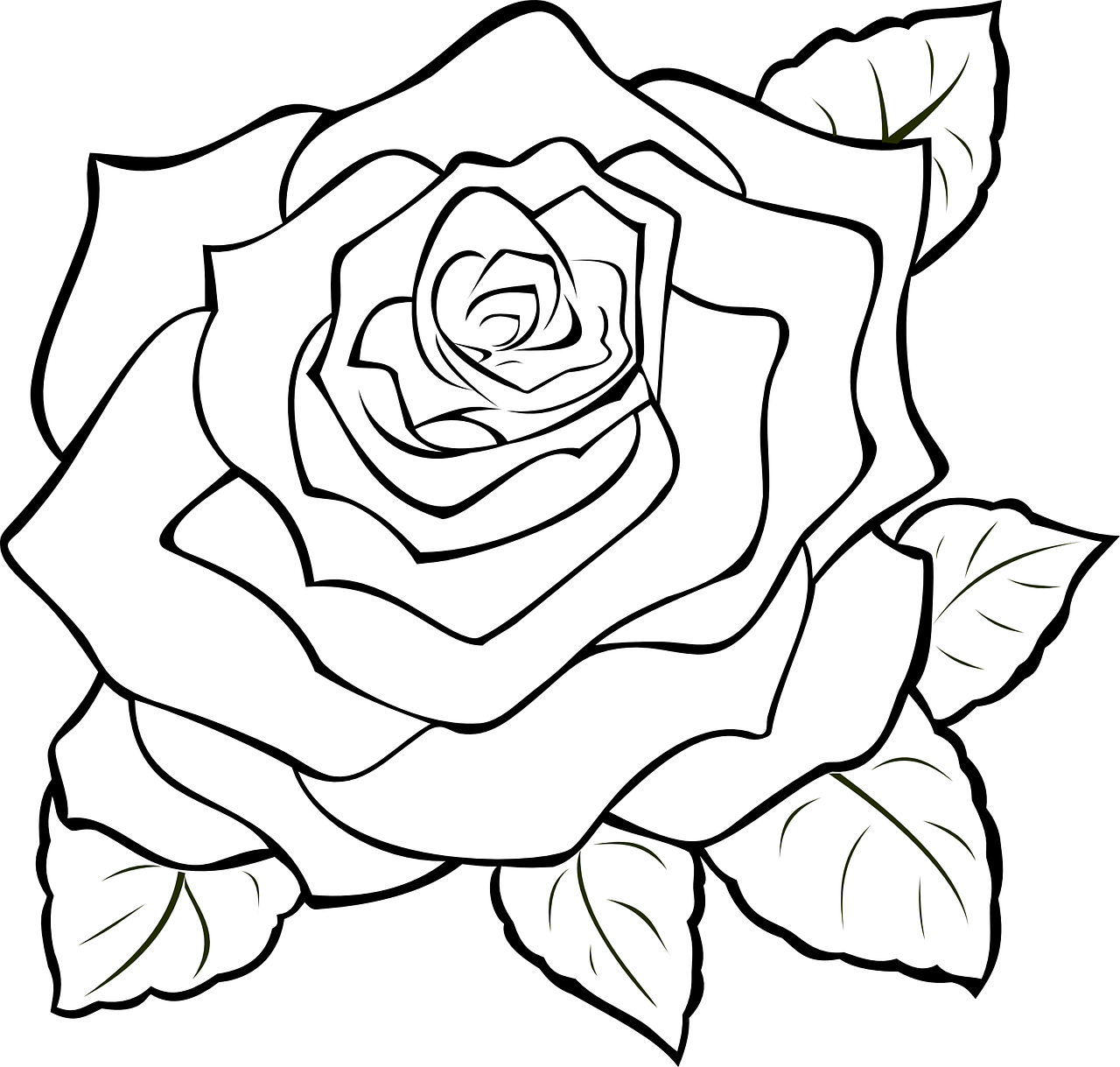 Petal drawing rose. How to make of