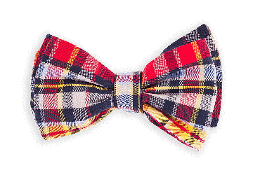 Male vector bow tie. The vabien ties for