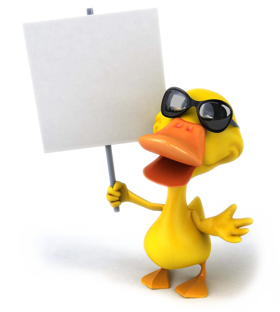 Mallard drawing duck hunting. Download pictures photography cartoon