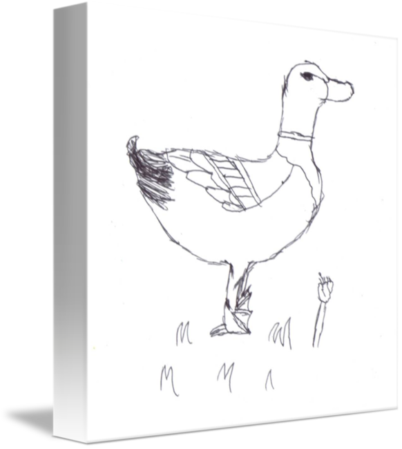 Mallard drawing colorful. Jakes duck sketch by