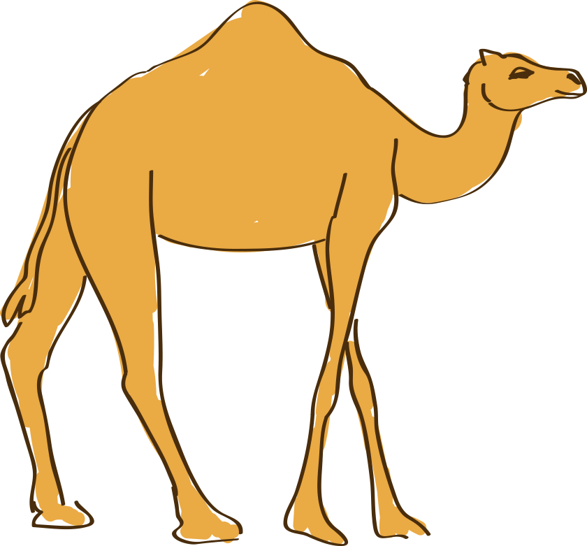 Dromedary animation hand painted. Drawing camels cartoon graphic royalty free stock