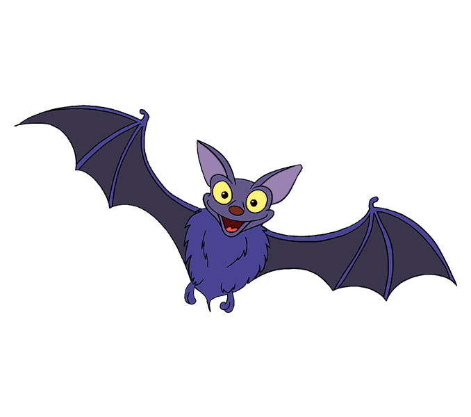 Mammal drawing bat. How to draw a