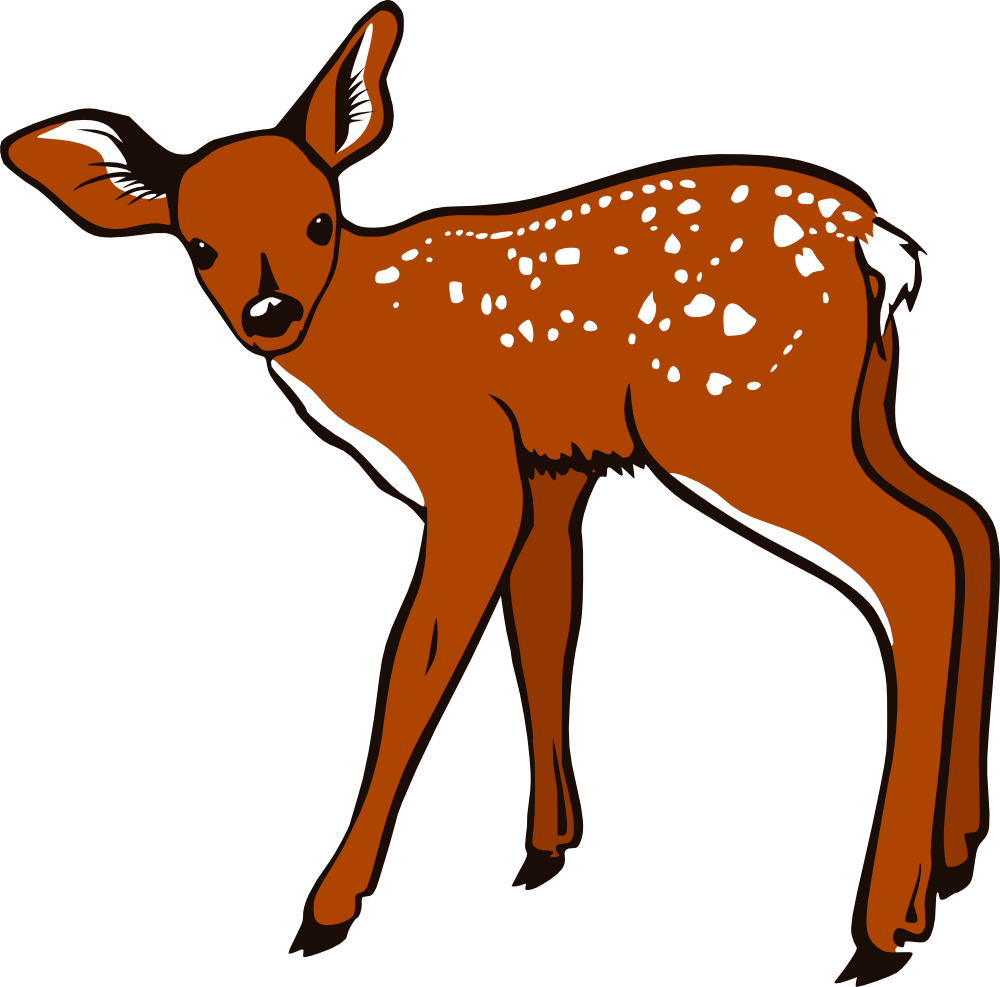 Mammal drawing fawn. Onlinelabels clip art