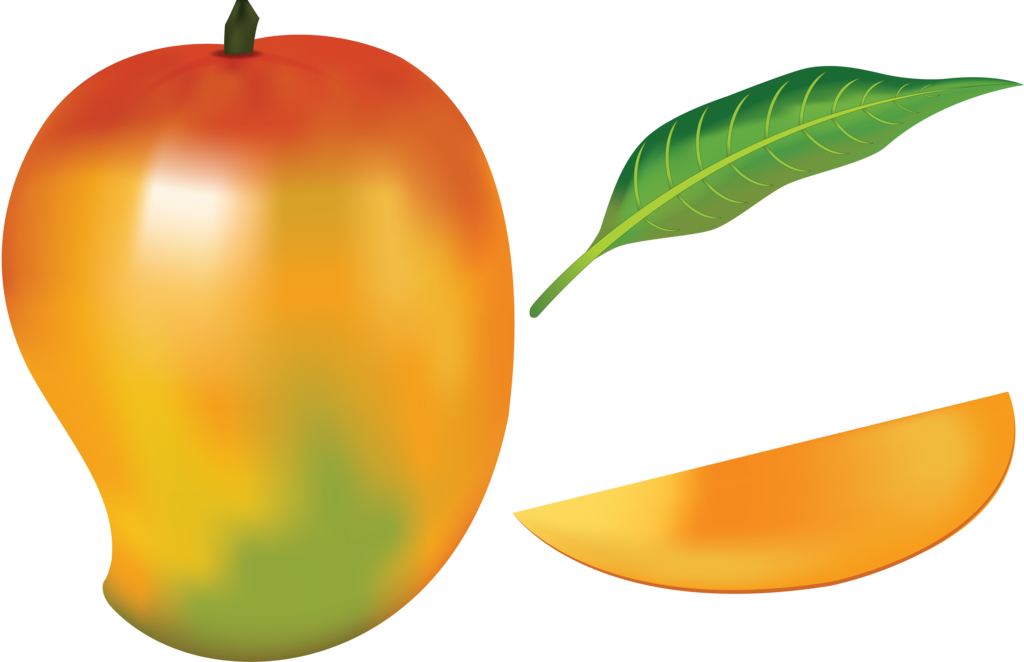 Mango vector png. Fruit by navdbest on