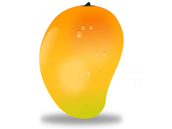 Mango vector png. Free images at clker