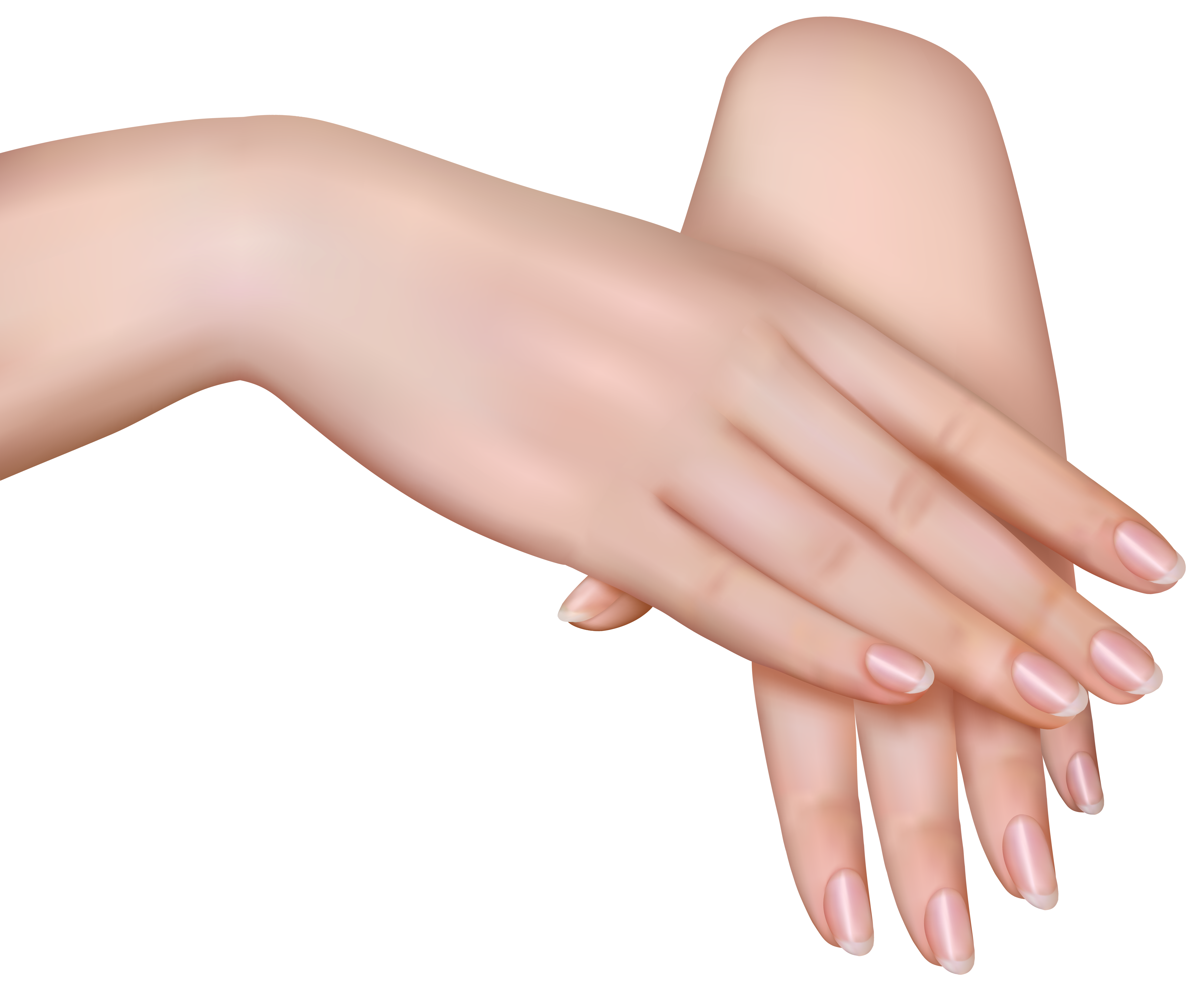 Manicure clipart transparent background. Female hands png image