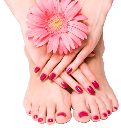 Vector nail manicure pedicure. What are manicures and