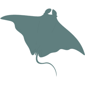 Manta. Free ray cliparts download