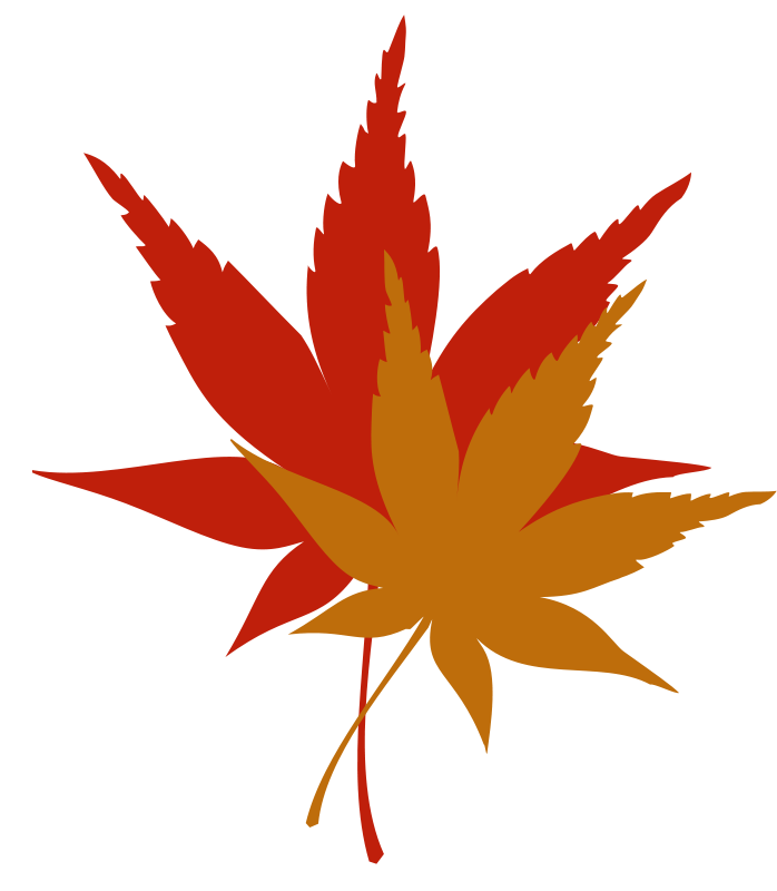 Maple clipart japanese maple. Leaf free clip art