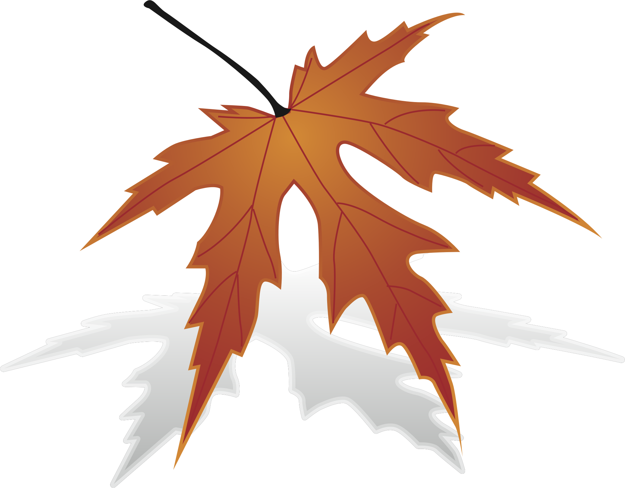 Maple clipart japanese maple. Leaf big image png