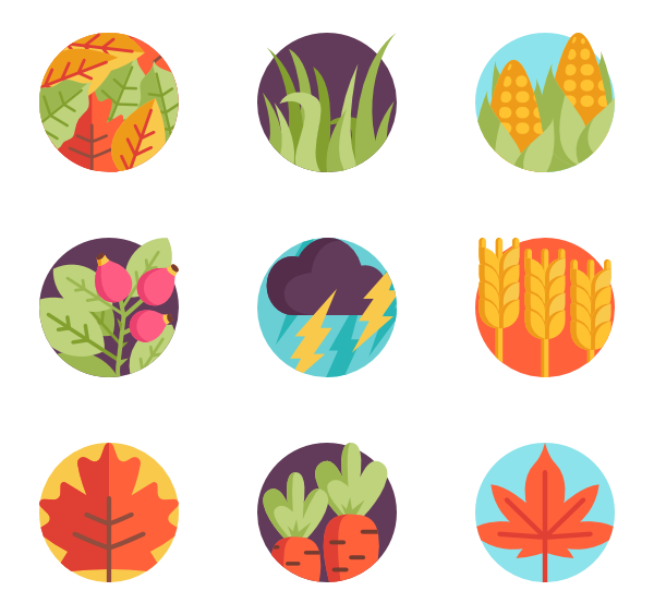 Maple vector. Leaf icons free autumn