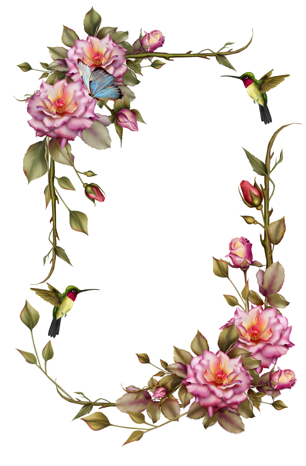 Marcos vector floral. Free border clipart collection