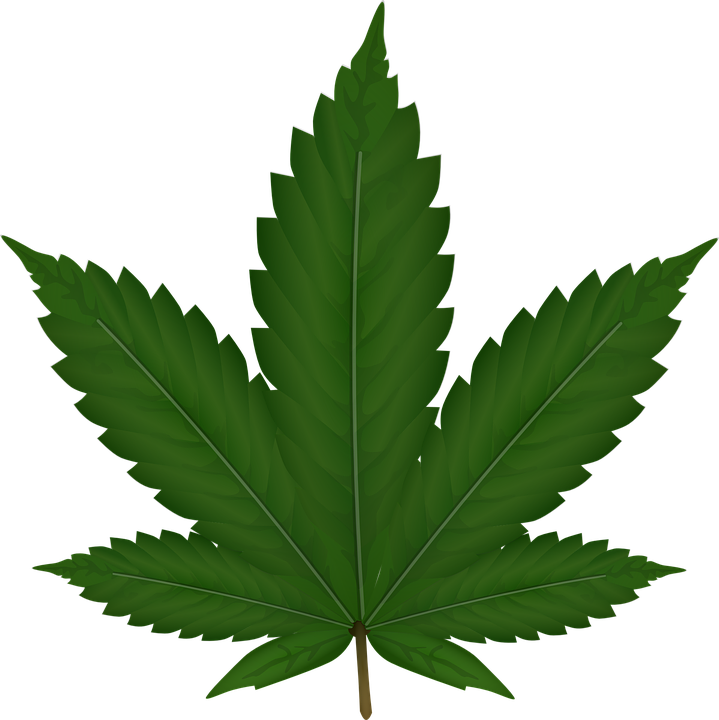 Weed mlg png. Cannabis images free download