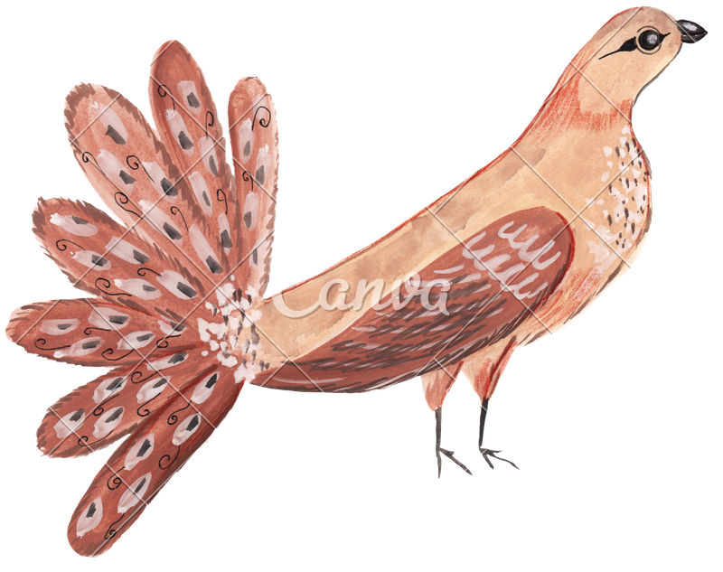 Markers drawing bird. Hand exotic photos by