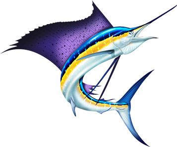 marlin clipart saltwater fish