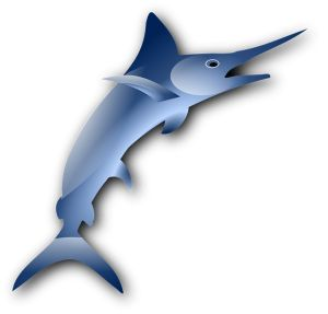 Marlin clipart xiphias. Best beach images