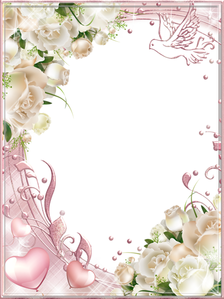 Marriage angels frames png. White roses pink photo