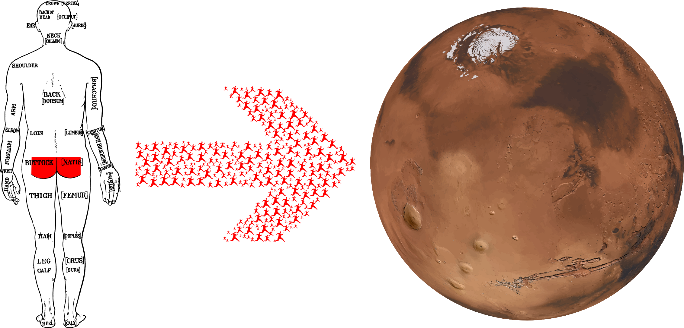 Mars clipart icon. Get your gluteus to