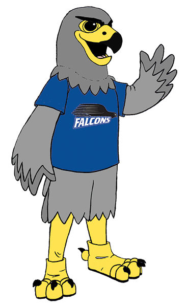 Mascot drawing bird. Name the bcc falcon