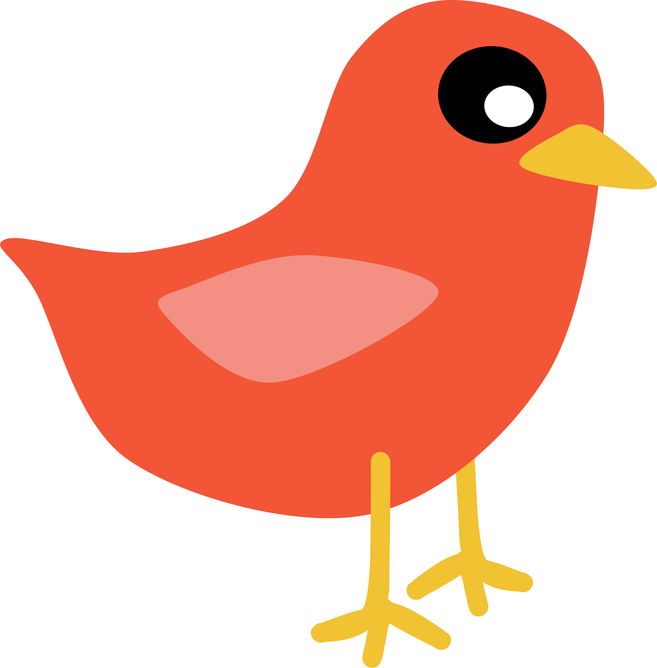 Vector parrot cute. Big bird clipart at