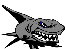 Vector sharks mascot. Shark logo pictures images