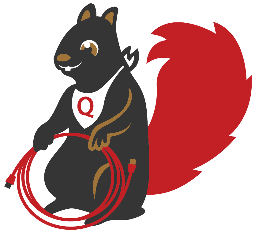 Mascot vector squirrel. It services consulting companies